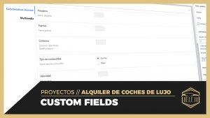 Custom fields o campos personalizados para coches - DELUJO