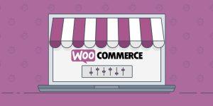 El misterio de los usuarios de WooCommerce que desaparecían